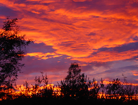 November sunset in Tucson, Arizona