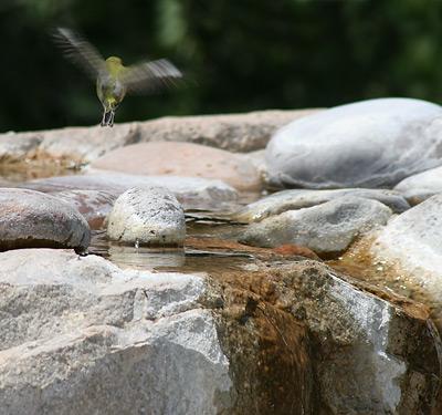 Waterfall birdbath