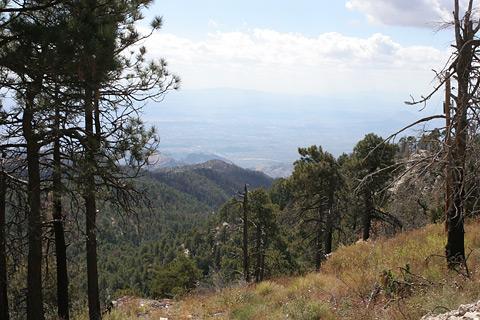 Looking toward Tucson from the summit of Mt. Bigelow, Arizona