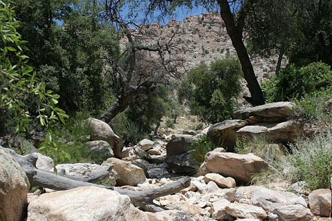 Wash in Molino Basin Campground