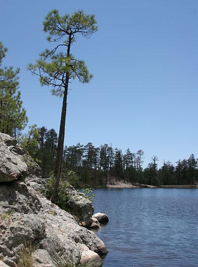 Rose Canyon Lake in the Santa Catalina Mountains