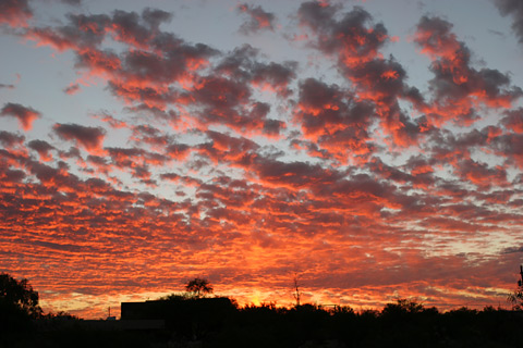 Sunset in Tucson, Arizona