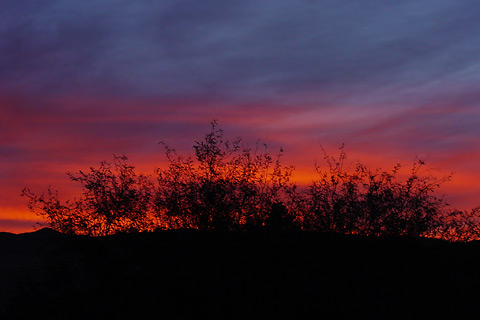 Red sunrise over the Rincon Mountains in Tucson, Arizona