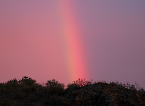 Sunset rainbow in the eastern sky on April 4, 2006 in Tucson, Arizona