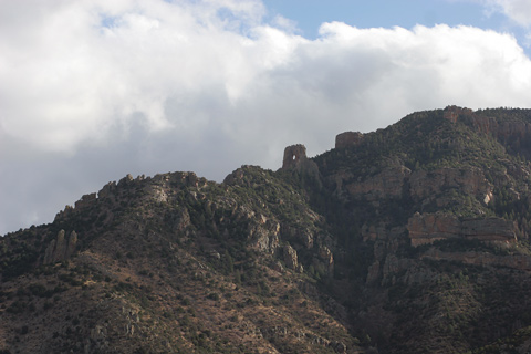 Eastern Chiricahua Mountains in early March
