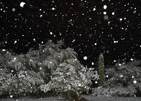Snowy night in Tucson, January 21, 2007