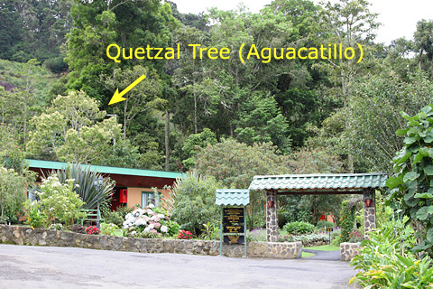 Savegre Mountain Hotel in San Gerardo de Dota, Costa Rica